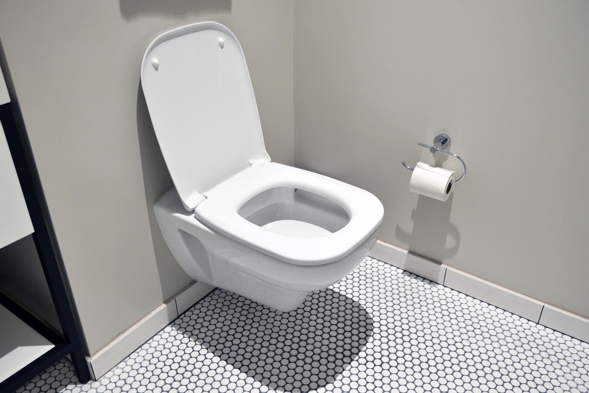 Японские придорожные туалеты научились измерять уровень усталости