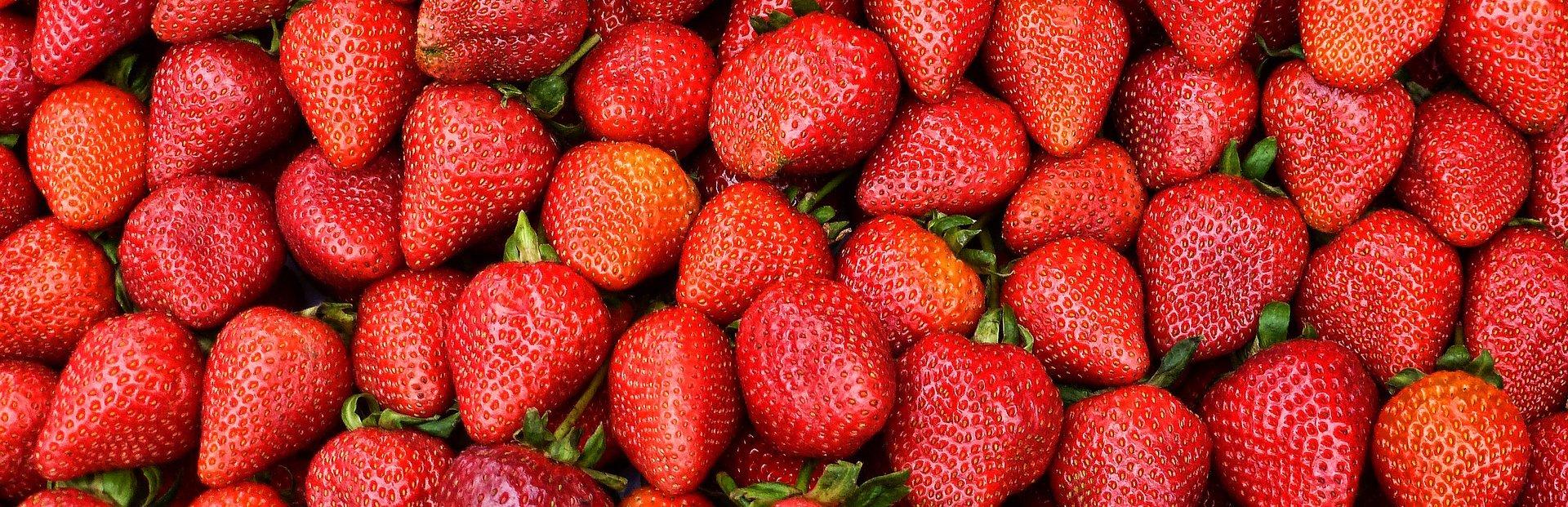 В рамках совместной хозяйственной деятельности с Россией на Курильских островах, Япония хочет выращивать клубнику на Курилах в теплицах
