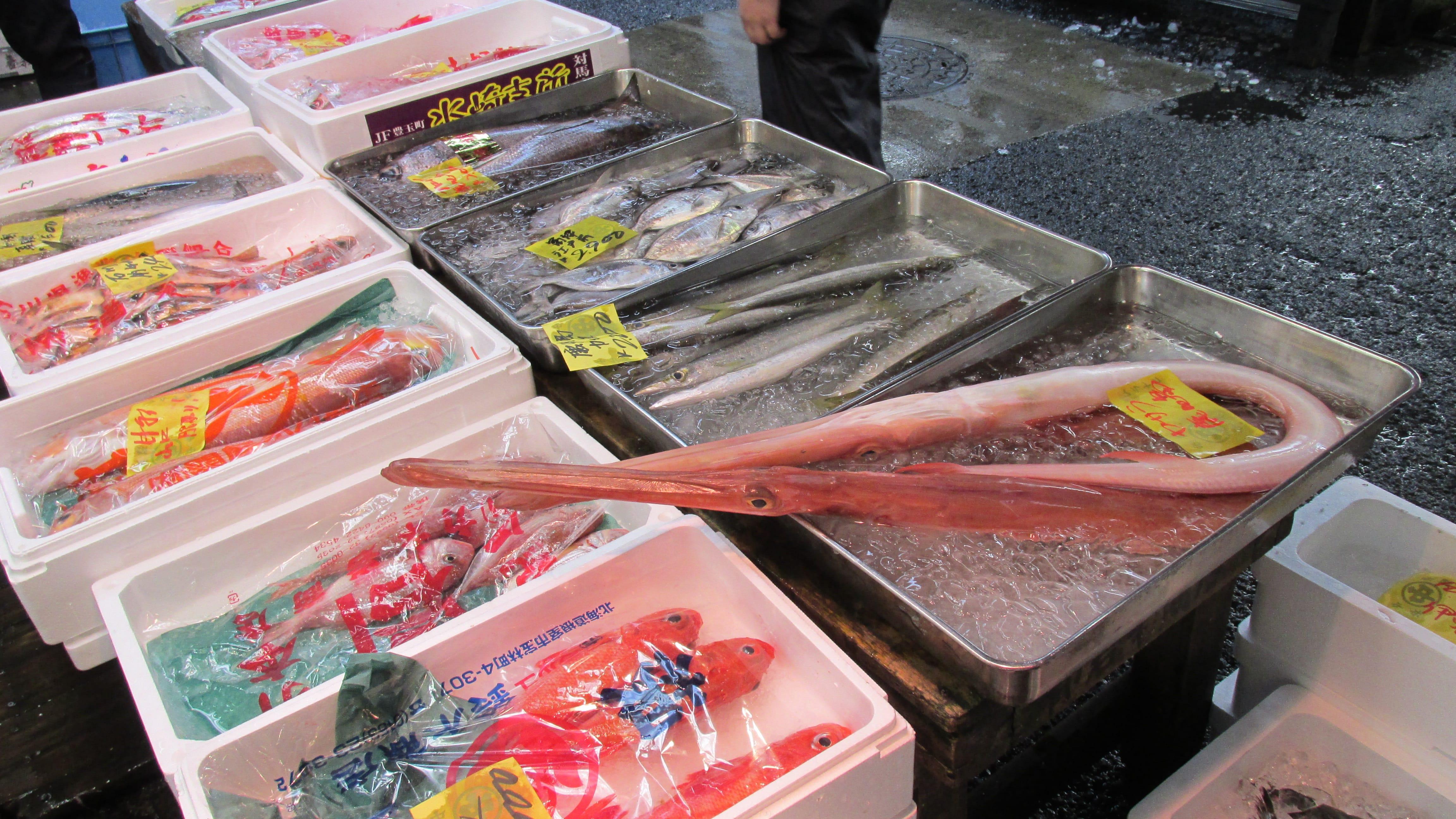 Многие Японские рестораны снижают цены на блюда из рыбы благодаря богатому улову тихоокеанской сайры