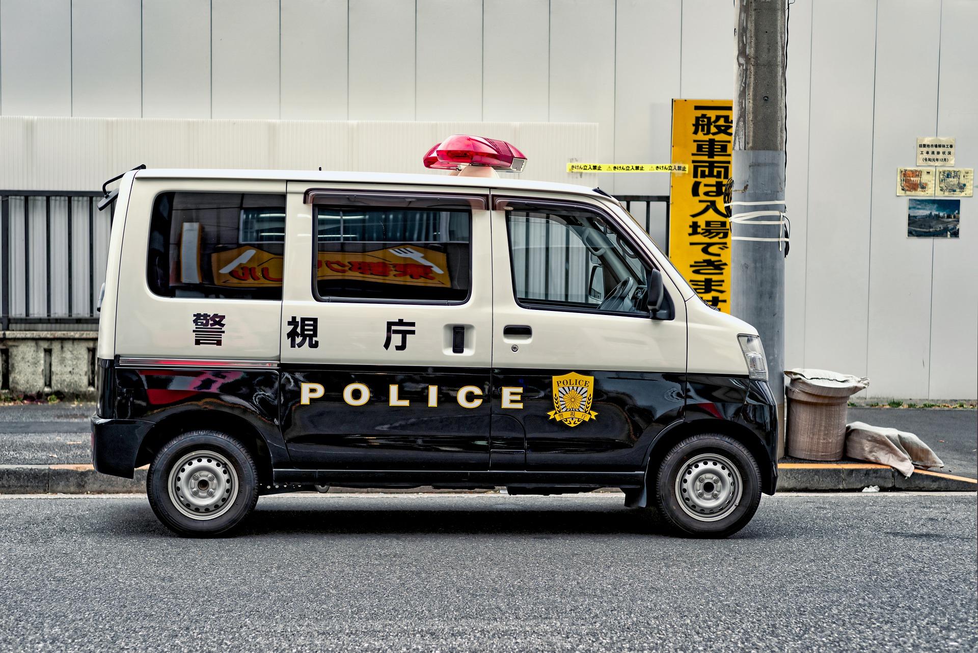 В Японии арестовали мужчину за кражу крошечных рыбок стоимостью 52 000 иен