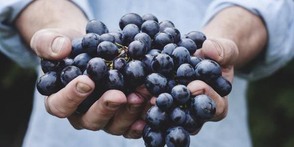 Японцы едят фрукты без кожуры?